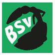 BSV AOK Leipzig Logo